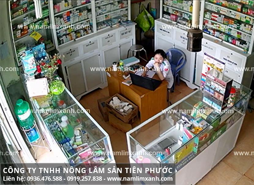 Cách chọn địa chỉ mua nấm lim xanh rừng chính hãng tại Nam Định là gì