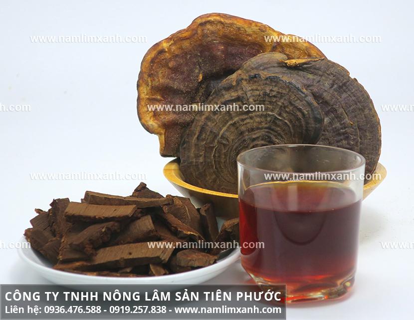 Cách đun nấm lim xanh Quảng Nam với tác dụng của nấm lim xanh tự nhiên
