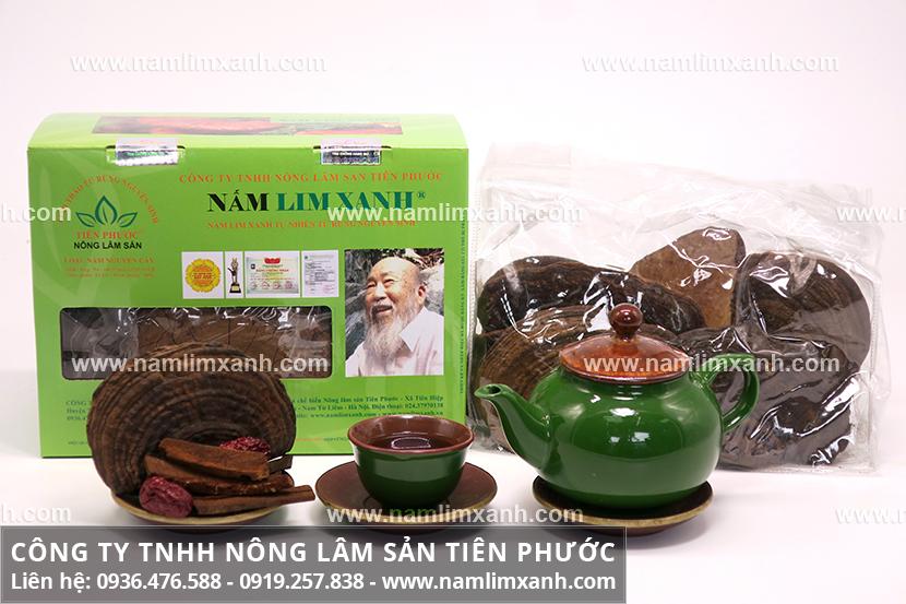 Công dụng của nấm lim xanh Tiên Phước và cách uống nấm cây lim xanh