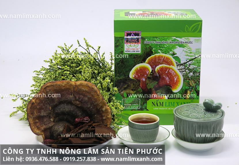 Công ty Nấm lim xanh Đại ngàn Tiên Phước có đại lý bán nấm ở Hưng Yên