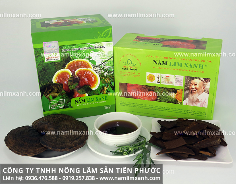 Công ty Nấm lim xanh Tiên Phước và sản phẩm nấm lim xanh Tiên Phước