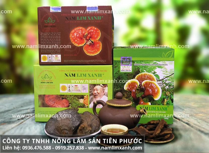 Công ty Nấm lim xanh Tiên Phước với cách chế biến nấm lim xanh rừng