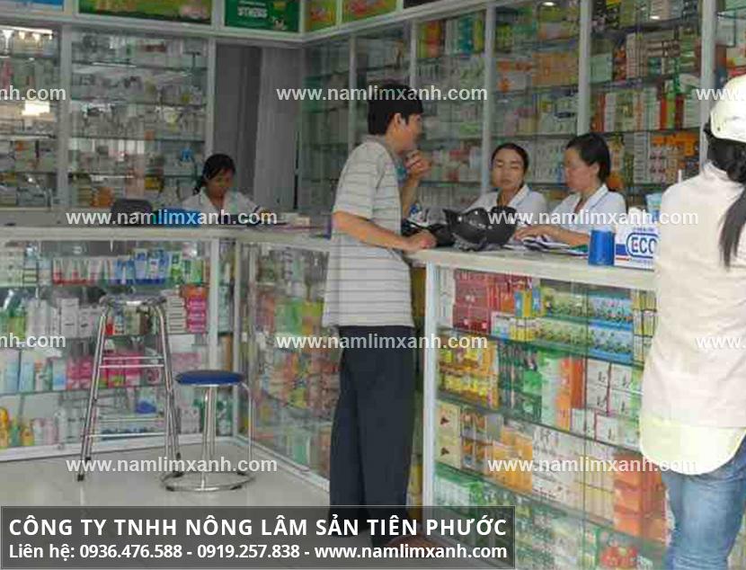 Đại lý bán nấm lim xanh tự nhiên ở Lào Cai được người dùng tin tưởng