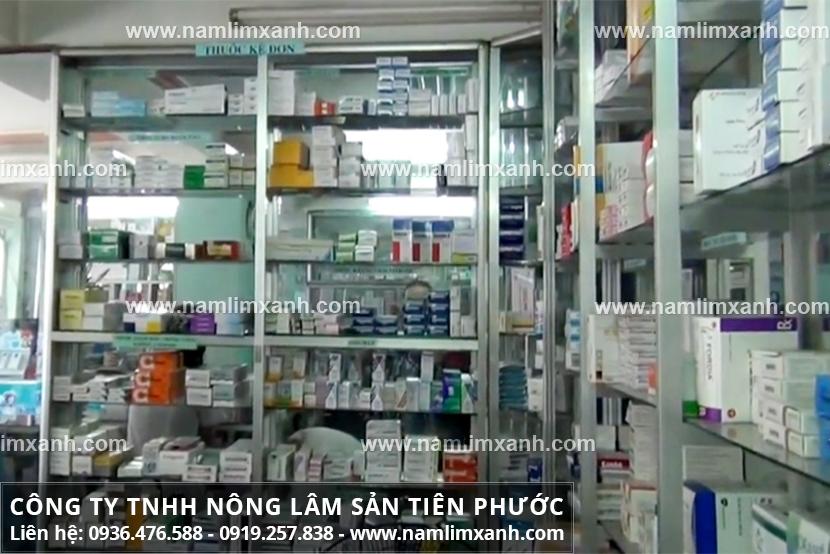 Đại lý phân phối sản phẩm nấm lim xanh rừng chính hãng tại Đắk Lắk