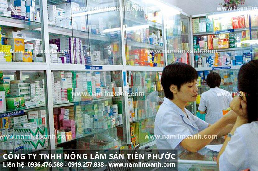 Đến đúng địa chỉ mua nấm lim xanh chính hãng ở tỉnh Yên Bái