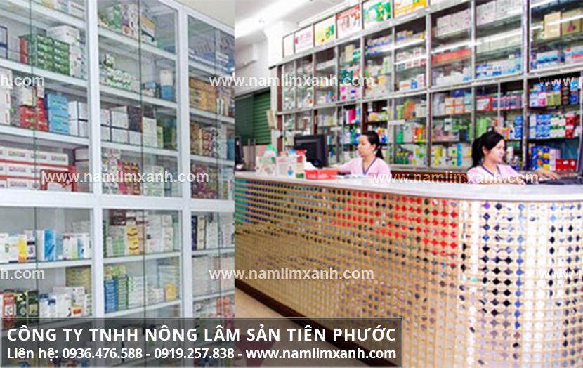 Đến đúng địa chỉ mua nấm lim xanh ở Lai Châu để phát huy được tác dụng