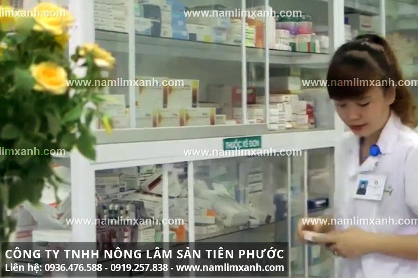 Địa chỉ bán buôn nấm lim xanh tại Tây Ninh và mua nấm lim xanh thật