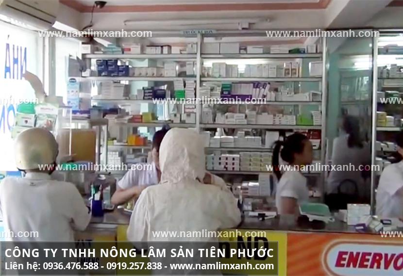 Địa chỉ bán nấm lim xanh chính hãng tại Bình Định có ở đâu?