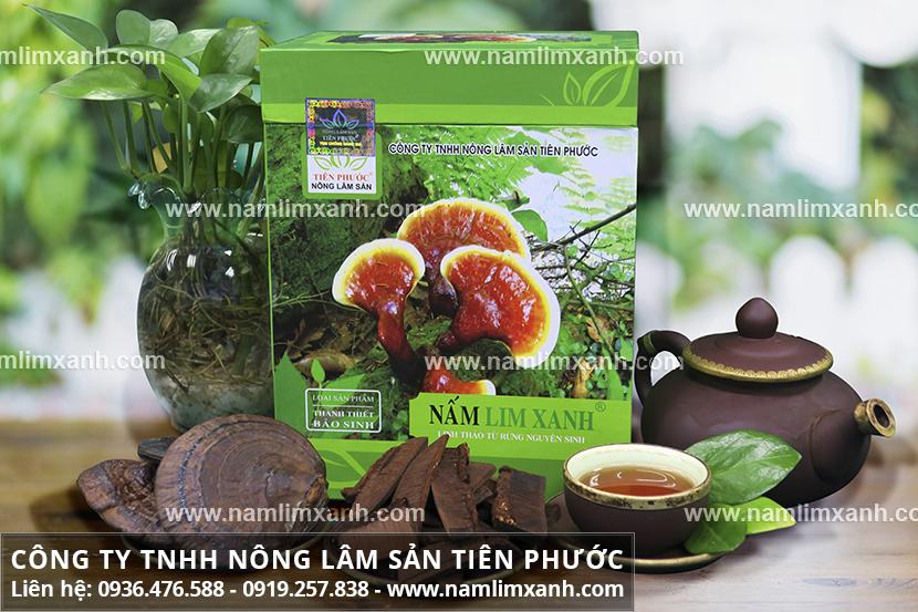 Giá mua nấm lim Công ty Nấm lim xanh Đại ngàn Tiên Phước niêm yết