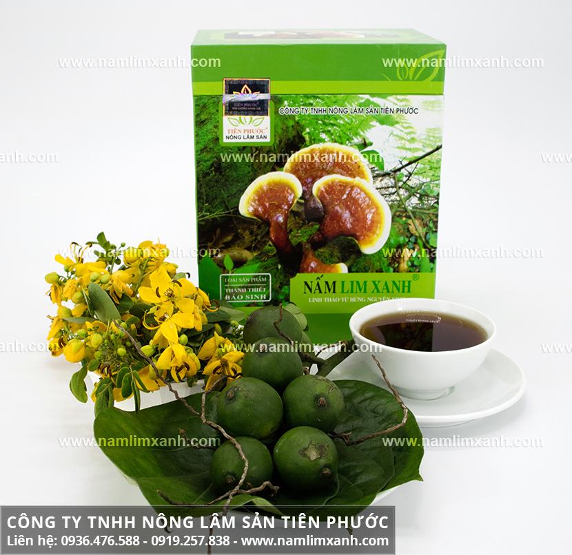 Giá nấm lim xanh Công ty Tiên Phước và địa chỉ mua nấm lim xanh rừng