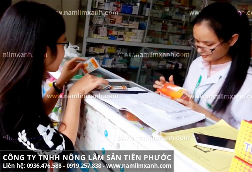 Giá nấm lim xanh Quảng Nam và giá 1kg nấm lim xanh tại Bình Thuận