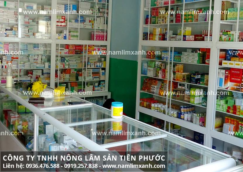 Giá thành nấm lim rừng ở Hải Phòng tương xứng với công dụng sản phẩm