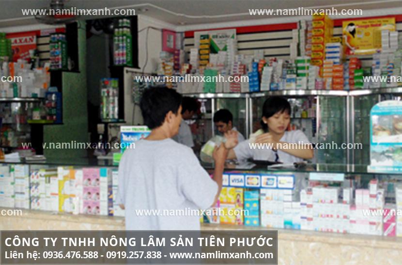 Giá tiền mua nấm lim xanh rừng chính hãng ở Ninh Bình là bao nhiêu?