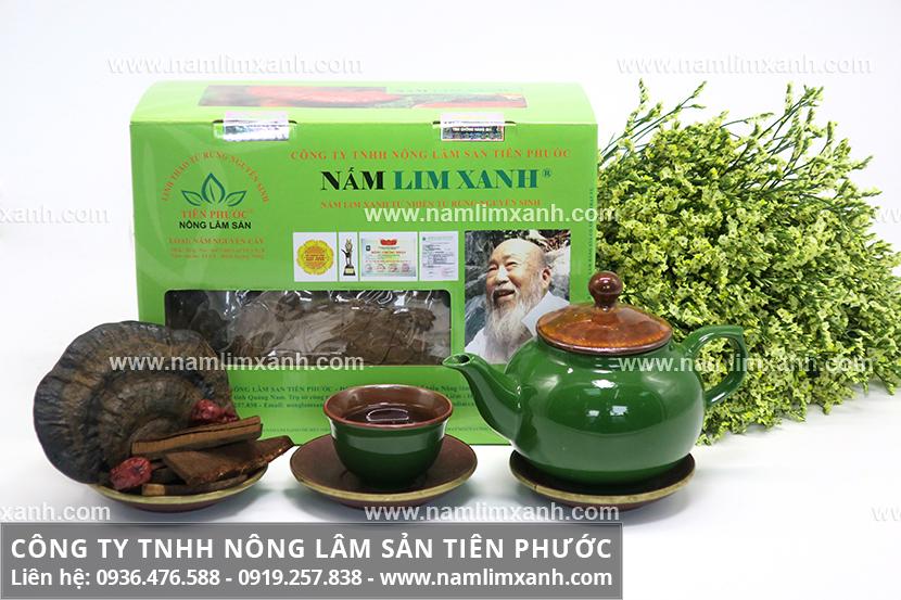 Nấm lim xanh chữa bệnh và nấm lim Tiên Phước Quảng Nam có công dụng