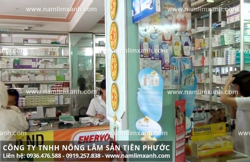 Nơi mua nấm lim xanh ở An Giang và giá bán nấm lim xanh bao nhiêu?