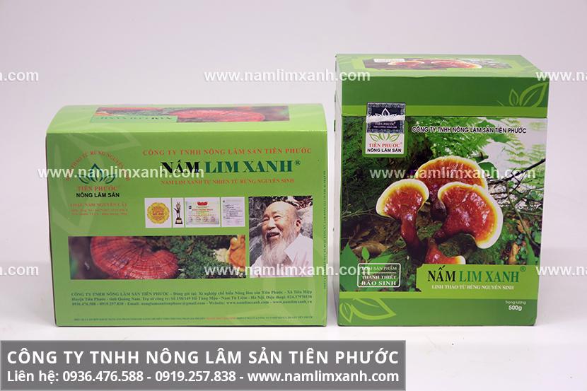 Sản phẩm nấm cây lim xanh của Công ty Nấm lim xanh Đại ngàn Tiên Phước