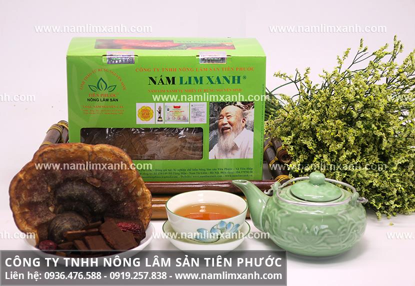 Nấm lim xanh Quảng Nam với hình ảnh nhận biết nấm lim rừng tự nhiên