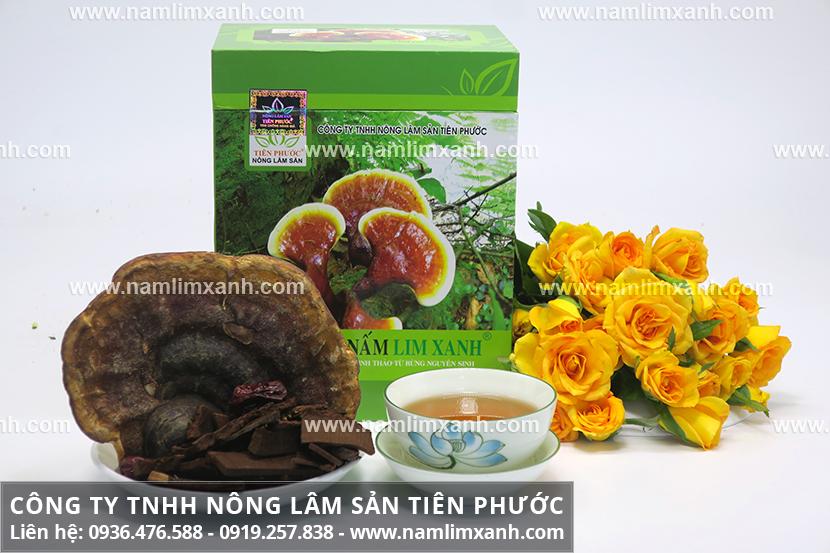 Tác dụng của nấm lim chữa bệnh ung thư và công dụng nấm lim xanh rừng
