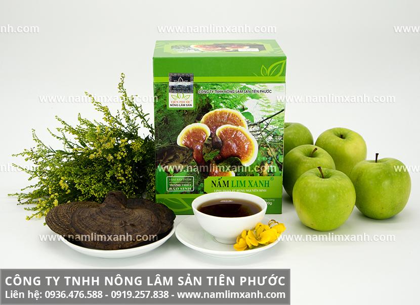 Cách dùng nấm lim xanh Tiên Phước và tác dụng của nấm lim xanh rừng