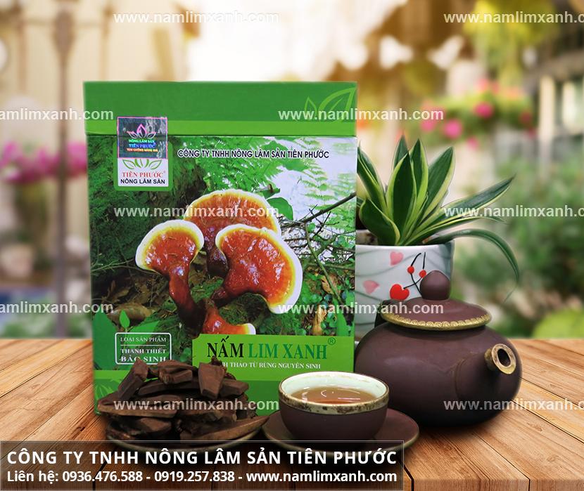 Bán nấm lim xanh tự nhiên và địa chỉ nơi bán nấm lim rừng uy tín