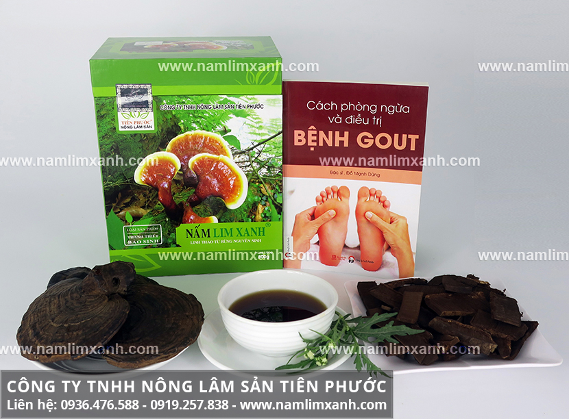 Giá bán nấm lim xanh ở Tiên Phước và các loại nấm lim rừng Tiên Phước