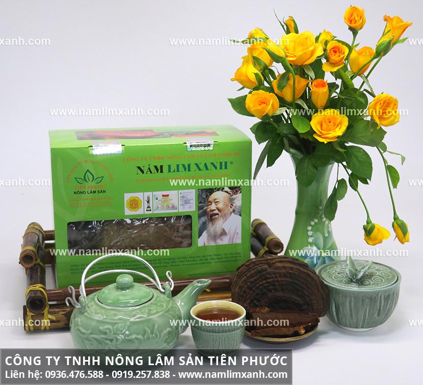 Hình ảnh nấm lim xanh và đặc điểm của nấm cây lim xanh rừng Tiên Phước