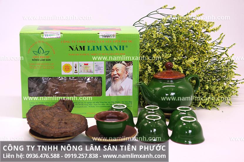 Nấm lim xanh rừng với phân biệt hình ảnh cây nấm lim xanh tự nhiên