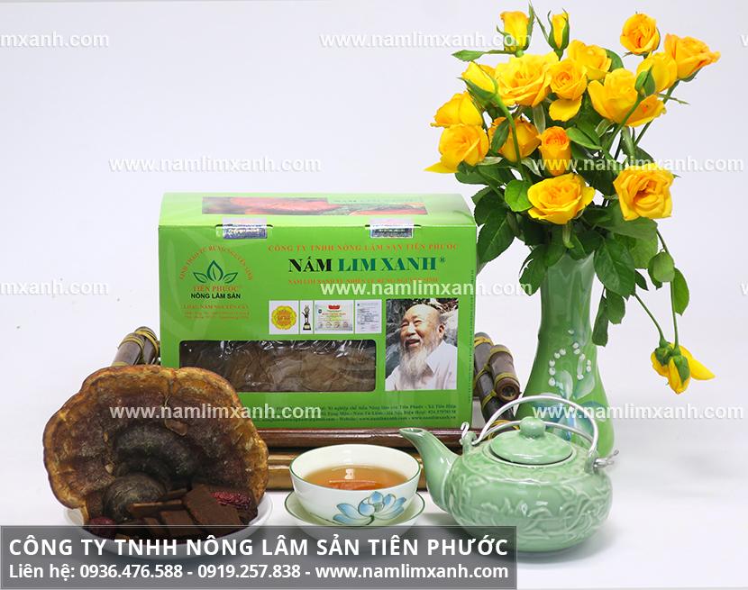 Đại lý nấm lim xanh Tiên Phước tại Quảng Bình với mua nấm lim xanh