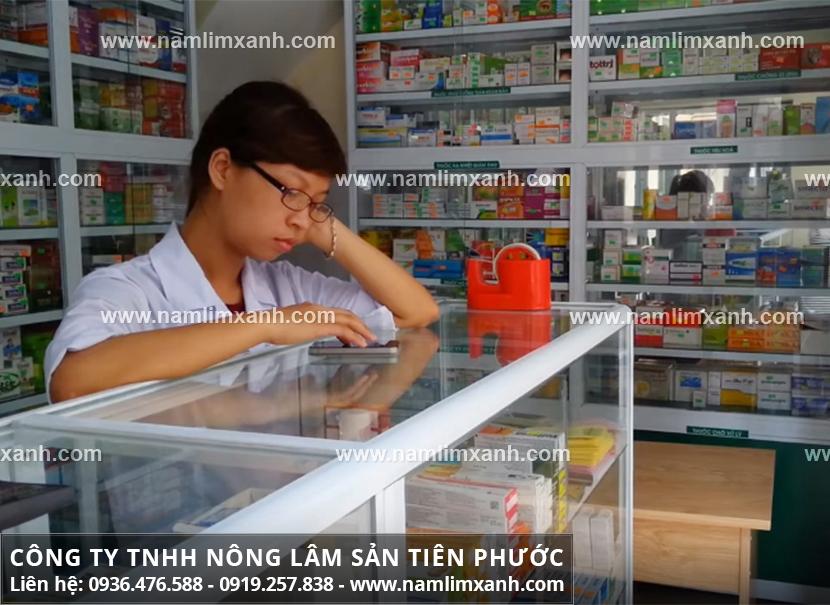 Giá nấm lim xanh Tiên Phước bao nhiêu với cách sử dụng nấm lim xanh