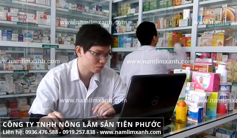 Nấm lim xanh giá bao nhiêu 1kg ở Điện Biên và công dụng nấm lim xanh