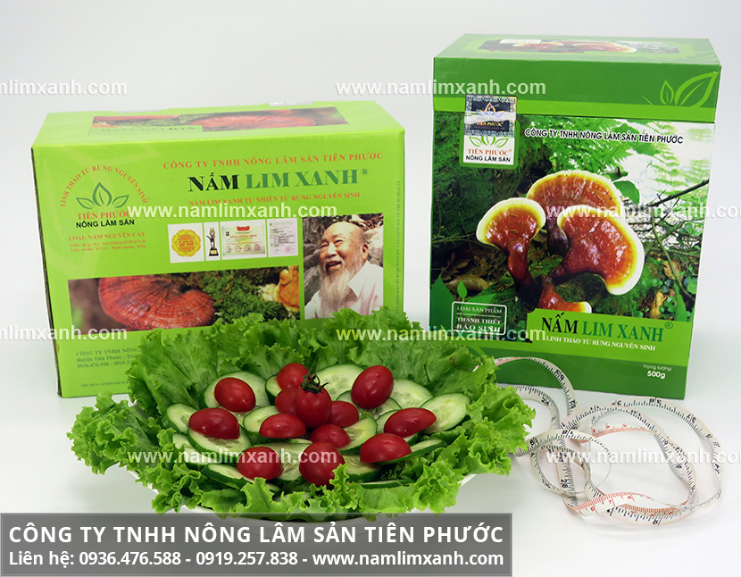 Bán nấm lim xanh Tiên Phước và giá nấm lim xanh Quảng Nam bao nhiêu?