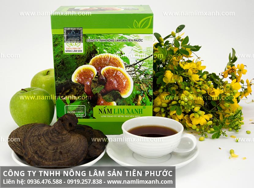 Cách dùng nấm lim xanh chữa men gan cao và cách nấu nấm lim rừng