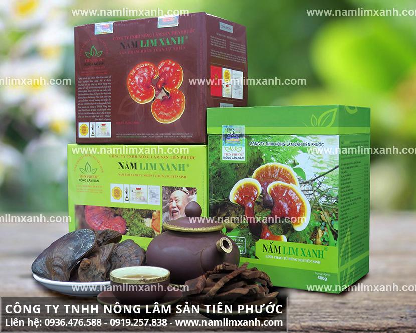 Giá bán nấm lim xanh Tiên Phước và các loại nấm lim xanh Quảng Nam