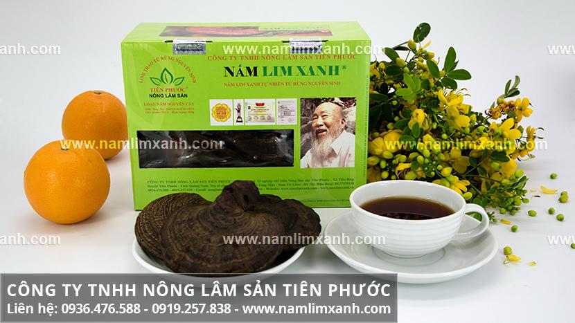 Giá nấm lim xanh Tiên Phước chính hãng và giá mua bán nấm lim rừng
