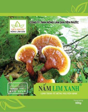 Tác dụng của nấm lim xanh tự nhiên đúng cách dùng nấm lim xanh