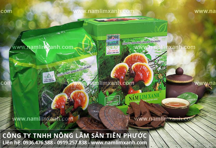 Nấm lim xanh Tiên Phước mua ở đâu tốt nhất và giá nấm cây lim xanh