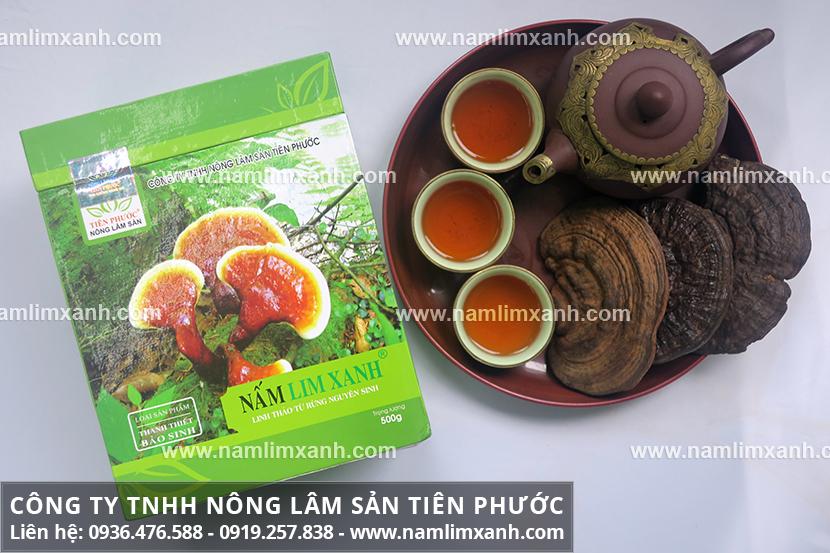 Tác dụng của nấm lim xanh chữa bệnh và công dụng nấm lim rừng tự nhiên
