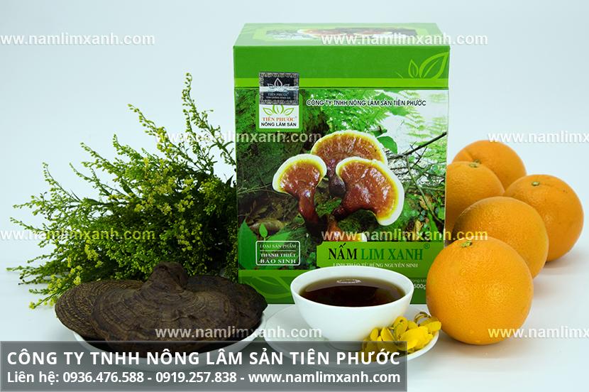 Tác dụng của nấm lim xanh Tiên Phước và lợi ích nấm cây lim xanh rừng
