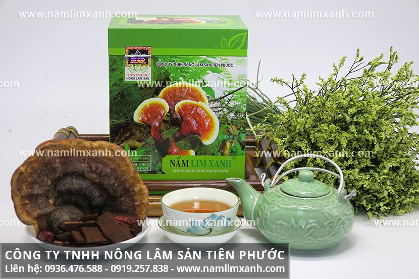 Tác dụng của nấm lim xanh và công dụng dược chất của nấm lim tự nhiên