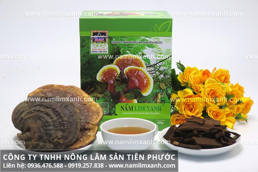 Cách sử dụng nấm lim xanh hiệu quả và làm sạch nấm lim rừng Tiên Phước