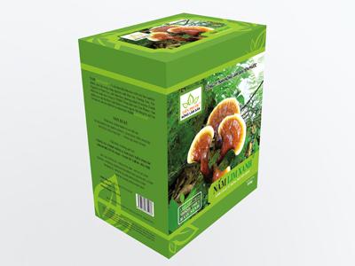 hộp sản phẩm nấm lim xanh