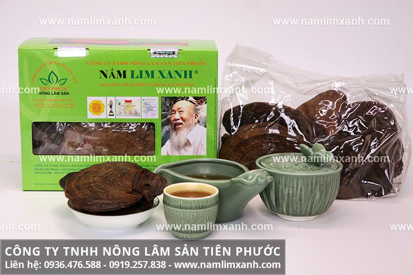 Nấm lim xanh Quảng Nam mọc ở đâu và quá trình tìm hái nấm lim rừng