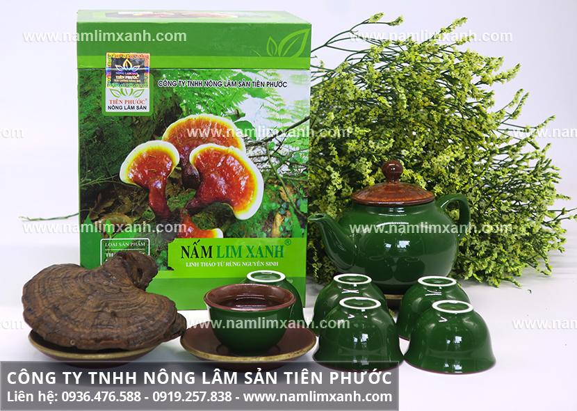 Nấm lim xanh Tiên Phước và hình ảnh của nấm lim rừng tự nhiên ra sao?
