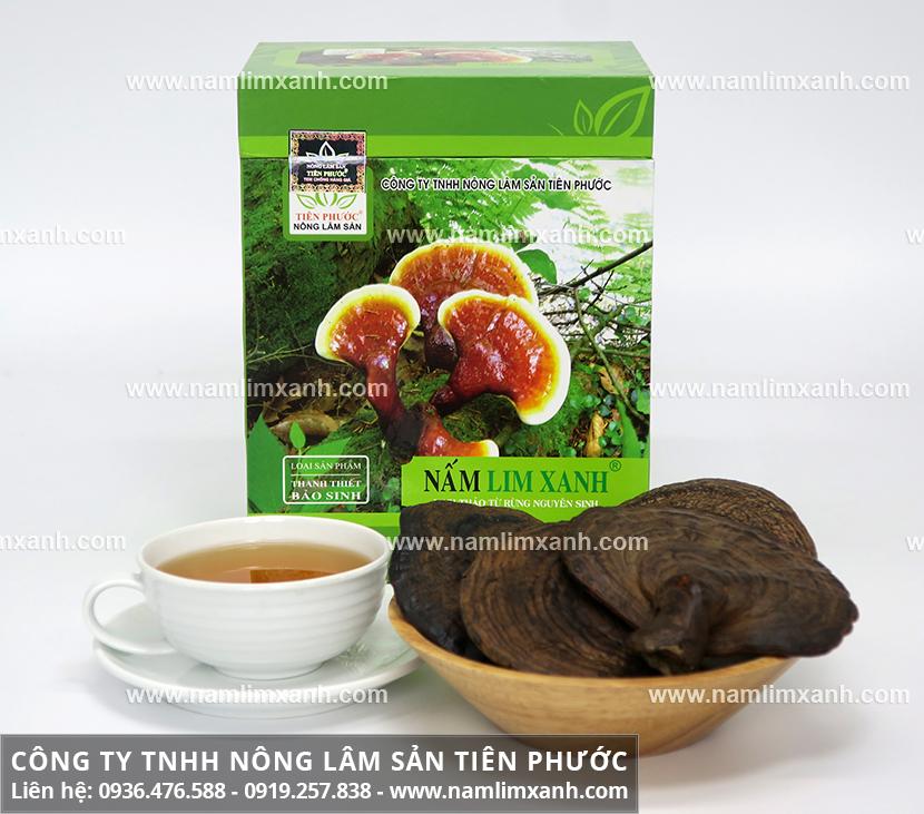 Tác dụng của nấm lim rừng và công dụng dược chất của nấm lim xanh