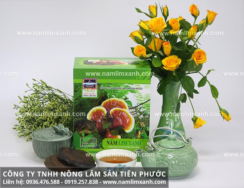 Tác dụng của nấm lim xanh tự nhiên và công dụng nấm lim rừng trị bệnh