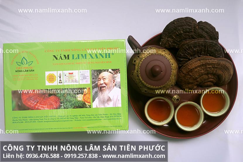 Cách sử dụng nấm lim Tiên Phước Quảng Nam và cách sắc nấm lim xanh