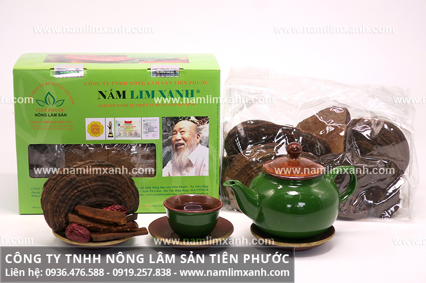 Công dụng nấm lim xanh chữa ung thư phổi và tác dụng dược chất nấm lim