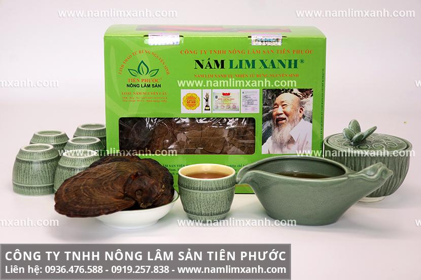 Cách nấu nấm lim xanh chữa bệnh và liều dùng nấm lim rừng Tiên Phước