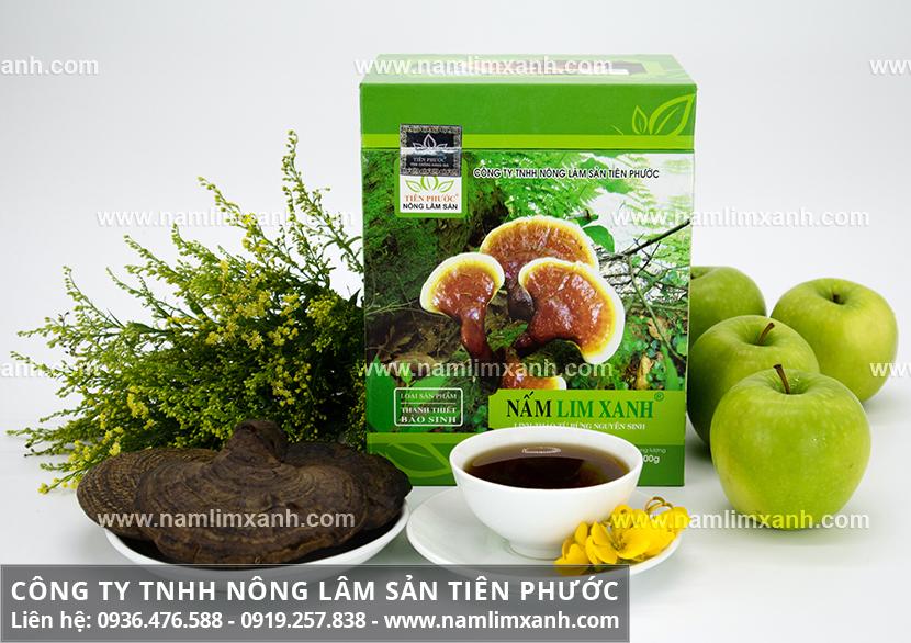 Tác dụng của nấm lim rừng chữa bệnh và công dụng nấm lim xanh tự nhiên