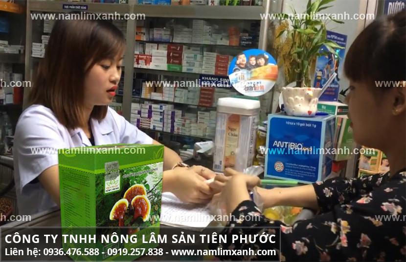 Giá nấm lim xanh Quảng Nam và địa chỉ bán nấm lim xanh tại Quảng Trị
